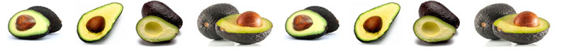 avocado-line